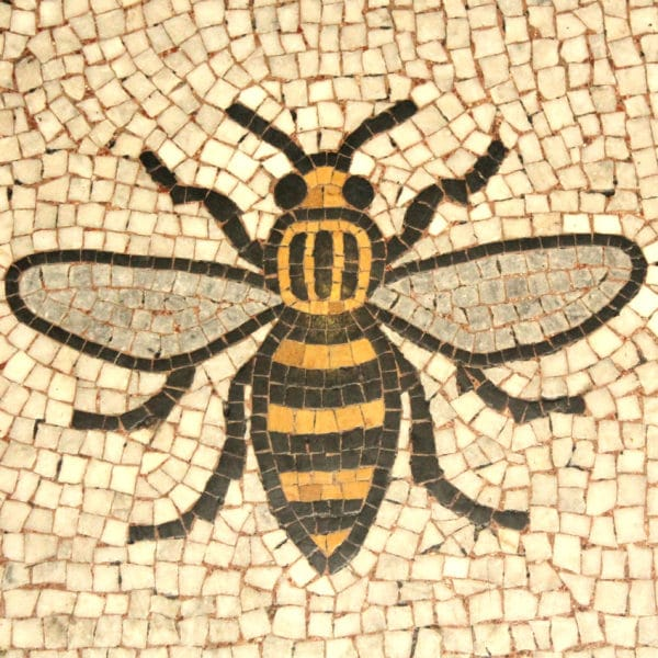 %name Manchester bee