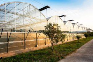 Garden centre Business Funding