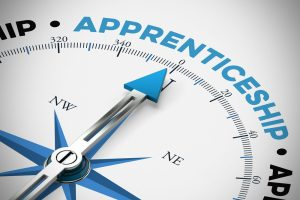 gov uk apprenticeships